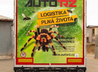 Pavouk: velkoobjemová souprava MAN TGXspřívěsem Schwarzmüller
